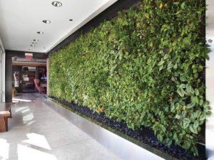 cuanto dura un jardin vertical artificial - 1